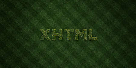 XHTML - fresh Grass letters with flowers and dandelions - 3D rendered royalty free stock image. Can be used for online banner ads and direct mailers.
