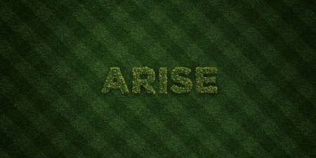ARISE - fresh Grass letters with flowers and dandelions - 3D rendered royalty free stock image. Can be used for online banner ads and direct mailers.