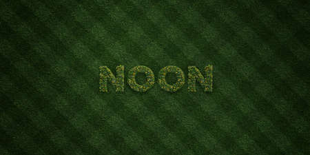 NOON - fresh Grass letters with flowers and dandelions - 3D rendered royalty free stock image. Can be used for online banner ads and direct mailers.