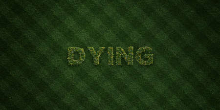 DYING - fresh Grass letters with flowers and dandelions - 3D rendered royalty free stock image. Can be used for online banner ads and direct mailers.