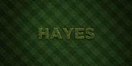 ヘイズ - 花とタンポポの新鮮な草の手紙 - 3 D レンダリングされたロイヤリティ フリー ストック イメージ。オンライン バナー広告やダイレクト メ