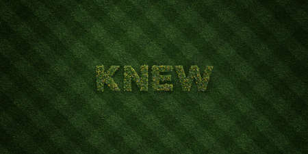 knew: KNEW - fresh Grass letters with flowers and dandelions - 3D rendered royalty free stock image. Can be used for online banner ads and direct mailers.