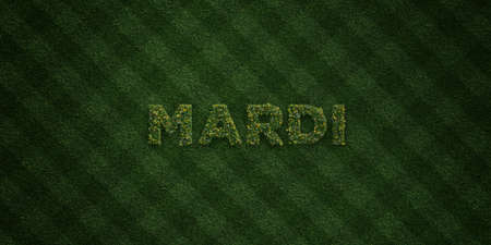 mardi grass: MARDI - fresh Grass letters with flowers and dandelions - 3D rendered royalty free stock image. Can be used for online banner ads and direct mailers.