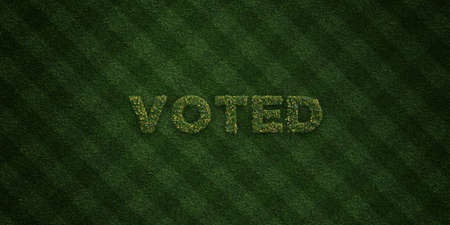 voted: VOTED - fresh Grass letters with flowers and dandelions - 3D rendered royalty free stock image. Can be used for online banner ads and direct mailers.
