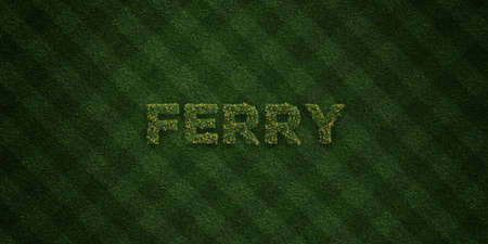 FERRY - fresh Grass letters with flowers and dandelions - 3D rendered royalty free stock image. Can be used for online banner ads and direct mailers. Banco de Imagens
