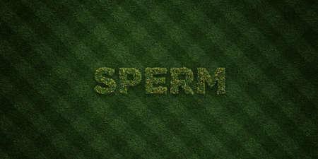 SPERM - Lettres d'herbes fraîches avec des fleurs et des pissenlits - image de fond 3D rendue libre de droits. Peut être utilisé pour les bannières en ligne et les publipostages. Banque d'images - 72673189