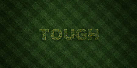 tough: TOUGH - fresh Grass letters with flowers and dandelions - 3D rendered royalty free stock image. Can be used for online banner ads and direct mailers. Stock Photo