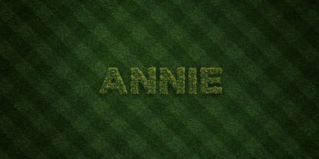 annie: ANNIE - fresh Grass letters with flowers and dandelions - 3D rendered royalty free stock image. Can be used for online banner ads and direct mailers. Stock Photo