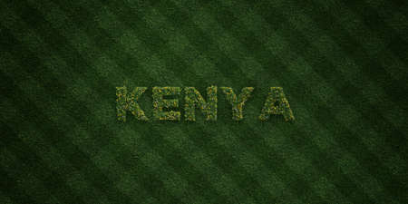 kenya: KENYA - fresh Grass letters with flowers and dandelions - 3D rendered royalty free stock image. Can be used for online banner ads and direct mailers.