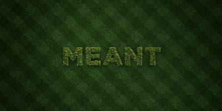 meant to be: MEANT - fresh Grass letters with flowers and dandelions - 3D rendered royalty free stock image. Can be used for online banner ads and direct mailers.