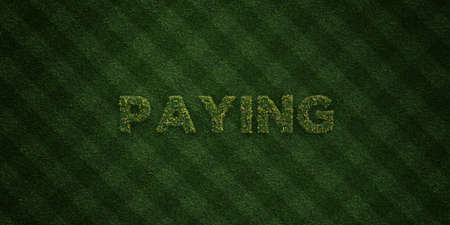 PAYING - fresh Grass letters with flowers and dandelions - 3D rendered royalty free stock image. Can be used for online banner ads and direct mailers.