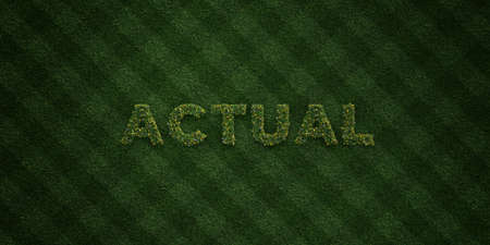 ACTUAL - fresh Grass letters with flowers and dandelions - 3D rendered royalty free stock image. Can be used for online banner ads and direct mailers. Stock fotó