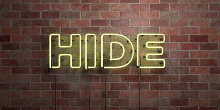 HIDE - fluorescent Neon tube Sign on brickwork - Front view - 3D rendered royalty free stock picture. Can be used for online banner ads and direct mailers. Stock Photo