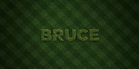 ブルース - 花とタンポポの新鮮な草の手紙 - 3 D レンダリングされたロイヤリティ フリー ストック イメージ。オンライン バナー広告やダイレクト