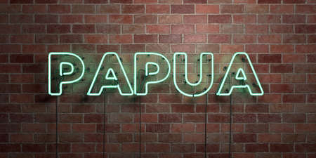 PAPUA - fluorescent Neon tube Sign on brickwork - Front view - 3D rendered royalty free stock picture. Can be used for online banner ads and direct mailers.