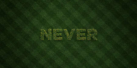 NEVER - fresh Grass letters with flowers and dandelions - 3D rendered royalty free stock image. Can be used for online banner ads and direct mailers.