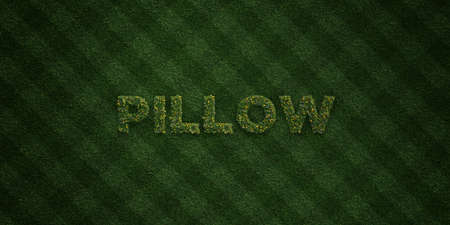 cushions: PILLOW - fresh Grass letters with flowers and dandelions - 3D rendered royalty free stock image. Can be used for online banner ads and direct mailers.