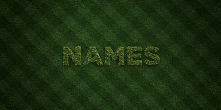 NAMES - fresh Grass letters with flowers and dandelions - 3D rendered royalty free stock image. Can be used for online banner ads and direct mailers.