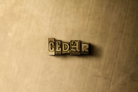 letterpress type: CEDAR - close-up of grungy vintage typeset word on metal backdrop. Royalty free stock illustration.  Can be used for online banner ads and direct mail.