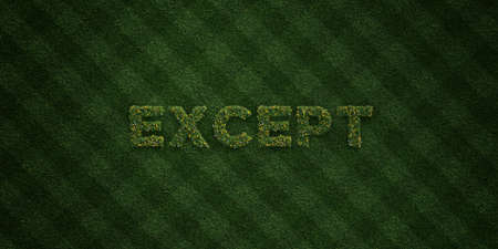 EXCEPT - fresh Grass letters with flowers and dandelions - 3D rendered royalty free stock image. Can be used for online banner ads and direct mailers.