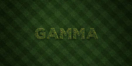 GAMMA - fresh Grass letters with flowers and dandelions - 3D rendered royalty free stock image. Can be used for online banner ads and direct mailers.