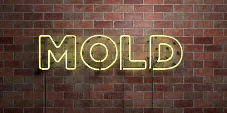 MOLD - fluorescent Neon tube Sign on brickwork - Front view - 3D rendered royalty free stock picture. Can be used for online banner ads and direct mailers.