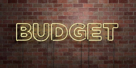 BUDGET - fluorescent Neon tube Sign on brickwork - Front view - 3D rendered royalty free stock picture. Can be used for online banner ads and direct mailers. Banque d'images