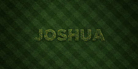 JOSHUA - fresh Grass letters with flowers and dandelions - 3D rendered royalty free stock image. Can be used for online banner ads and direct mailers.
