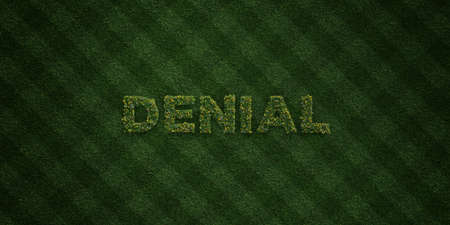 denial: DENIAL - fresh Grass letters with flowers and dandelions - 3D rendered royalty free stock image. Can be used for online banner ads and direct mailers.