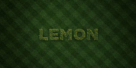 lemon grass: LEMON - fresh Grass letters with flowers and dandelions - 3D rendered royalty free stock image. Can be used for online banner ads and direct mailers. Stock Photo