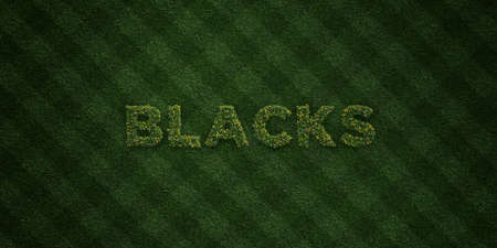 blacks: BLACKS - fresh Grass letters with flowers and dandelions - 3D rendered royalty free stock image. Can be used for online banner ads and direct mailers.