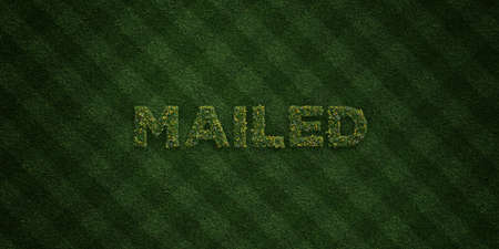 mailed: MAILED - fresh Grass letters with flowers and dandelions - 3D rendered royalty free stock image. Can be used for online banner ads and direct mailers. Stock Photo