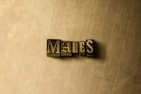 letterpress type: MALES - close-up of grungy vintage typeset word on metal backdrop. Royalty free stock illustration.  Can be used for online banner ads and direct mail. Stock Photo