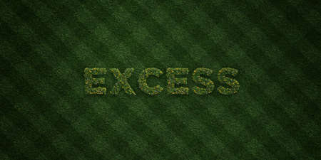 excess: EXCESS - fresh Grass letters with flowers and dandelions - 3D rendered royalty free stock image. Can be used for online banner ads and direct mailers.