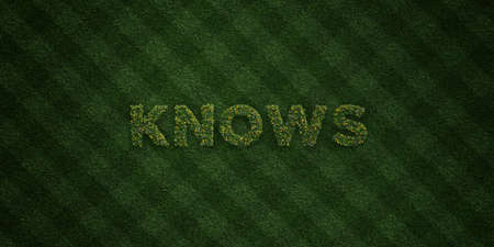 knows: KNOWS - fresh Grass letters with flowers and dandelions - 3D rendered royalty free stock image. Can be used for online banner ads and direct mailers. Stock Photo