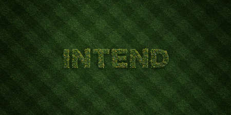 INTEND - fresh Grass letters with flowers and dandelions - 3D rendered royalty free stock image. Can be used for online banner ads and direct mailers. Stock Photo