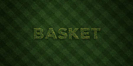 BASKET - fresh Grass letters with flowers and dandelions - 3D rendered royalty free stock image. Can be used for online banner ads and direct mailers.