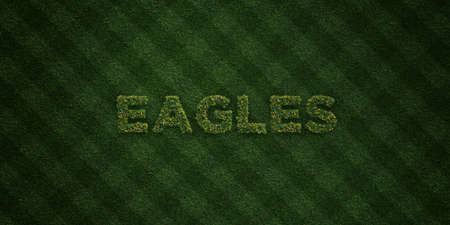 EAGLES - fresh Grass letters with flowers and dandelions - 3D rendered royalty free stock image. Can be used for online banner ads and direct mailers.