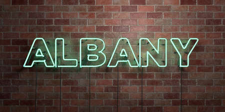 albany: ALBANY - fluorescent Neon tube Sign on brickwork - Front view - 3D rendered royalty free stock picture. Can be used for online banner ads and direct mailers.