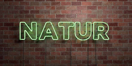 NATUR - fluorescent Neon tube Sign on brickwork - Front view - 3D rendered royalty free stock picture. Can be used for online banner ads and direct mailers.