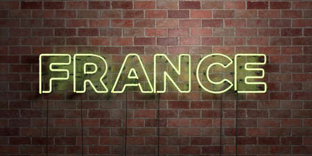 FRANCE - fluorescent Neon tube Sign on brickwork - Front view - 3D rendered royalty free stock picture. Can be used for online banner ads and direct mailers.