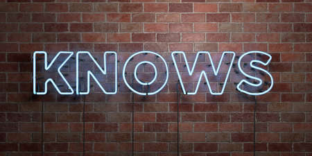 knows: KNOWS - fluorescent Neon tube Sign on brickwork - Front view - 3D rendered royalty free stock picture. Can be used for online banner ads and direct mailers.