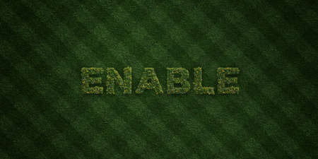 enable: ENABLE - fresh Grass letters with flowers and dandelions - 3D rendered royalty free stock image. Can be used for online banner ads and direct mailers. Stock Photo