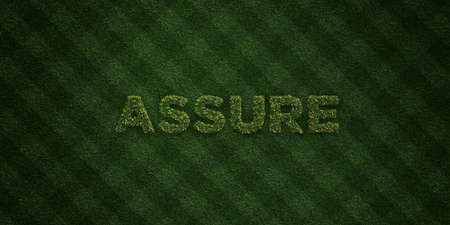 assure: ASSURE - fresh Grass letters with flowers and dandelions - 3D rendered royalty free stock image. Can be used for online banner ads and direct mailers. Stock Photo