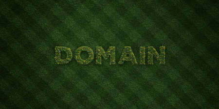domains: DOMAIN - fresh Grass letters with flowers and dandelions - 3D rendered royalty free stock image. Can be used for online banner ads and direct mailers. Stock Photo
