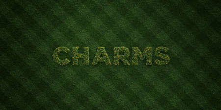 CHARMS - fresh Grass letters with flowers and dandelions - 3D rendered royalty free stock image. Can be used for online banner ads and direct mailers.