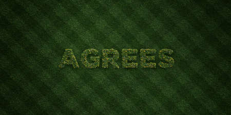 agrees: AGREES - fresh Grass letters with flowers and dandelions - 3D rendered royalty free stock image. Can be used for online banner ads and direct mailers. Stock Photo
