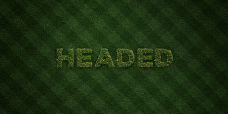 three headed: HEADED - fresh Grass letters with flowers and dandelions - 3D rendered royalty free stock image. Can be used for online banner ads and direct mailers.