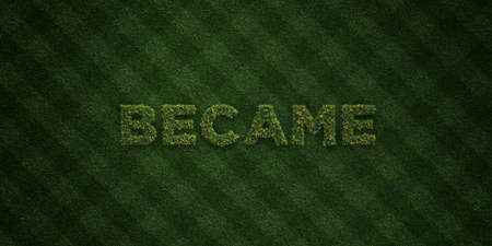 became: BECAME - fresh Grass letters with flowers and dandelions - 3D rendered royalty free stock image. Can be used for online banner ads and direct mailers.