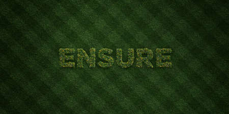 ENSURE - fresh Grass letters with flowers and dandelions - 3D rendered royalty free stock image. Can be used for online banner ads and direct mailers.